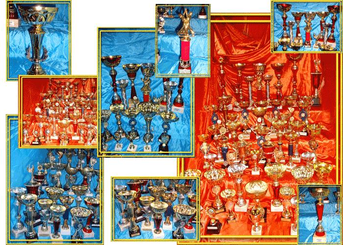 Кубки танцевального коллектива Офелия
